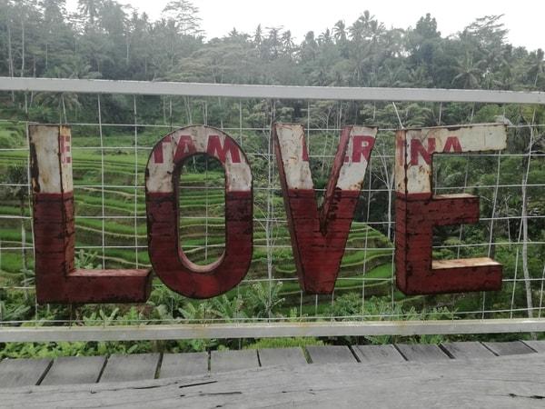 LOVE Zeichen vor Reisfeld auf Bali.
